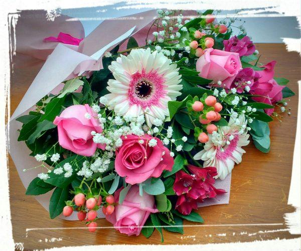 eleuthero mpoyketo roz